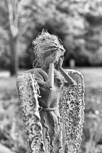Weeping Angel | by Jeff Buchbinder