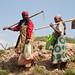 Women create terraces