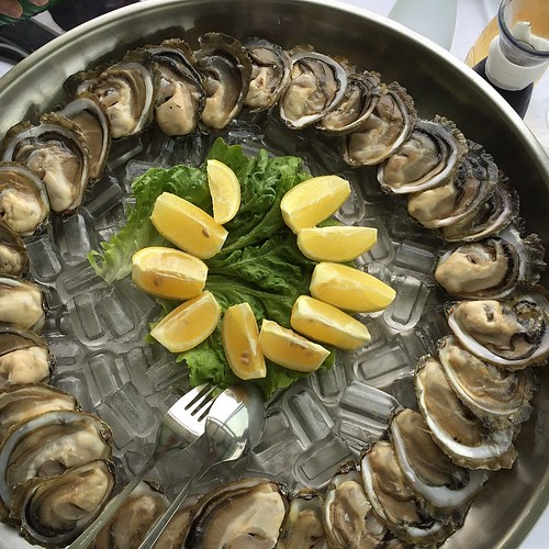 Oysters - how could a day be better? #LoveCroatia #VisitCroatia #Croatia #dalmatia #Dubrovnik #Mljet #ston #MaliSton #Salzseen #Familienurlaub #wine #wein #travel #travelblog #travelingram #travelphotography #instapassport #travelgram #mytravelgram #trave