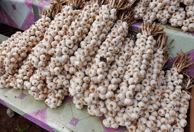 garlic-market