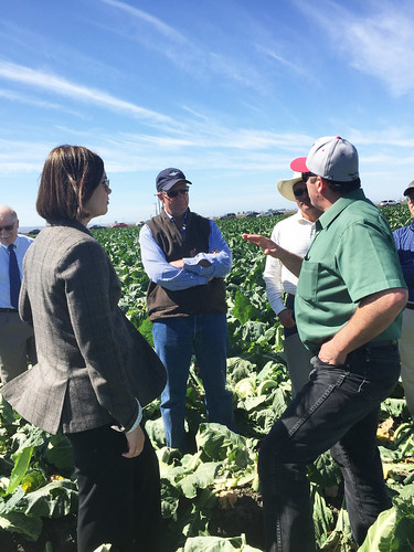 U.S. Department of Agriculture (USDA) Farm and Foreign Agricultural Services (FFAS) Deputy Under Secretary Alexis Taylor speaking with local growers.