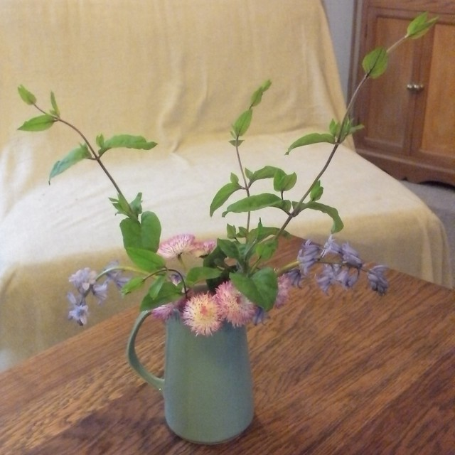 Flowers standing in a pastel-blue Foley jug, on a wooden coffee table.