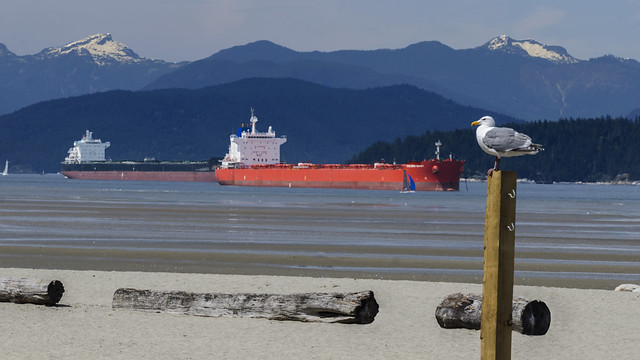 Tanker Guardian
