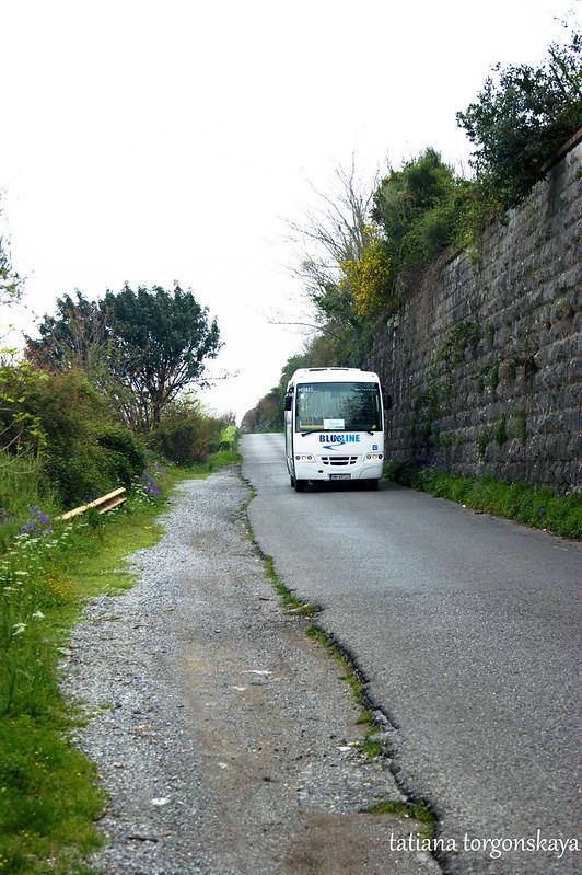 Автобус  Blue line на дороге