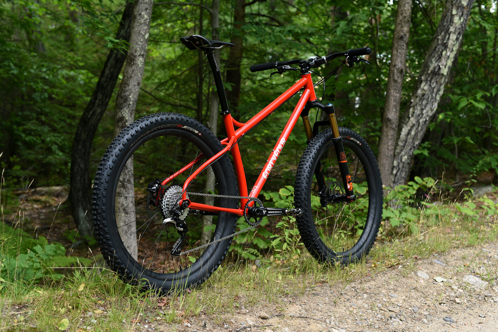 Todd's 27.5+ X In the Wild