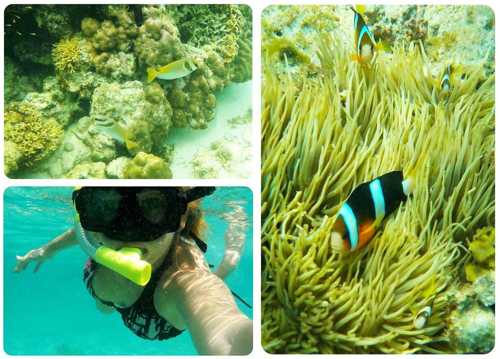 Bacuit Archipelago underwater snorkeling