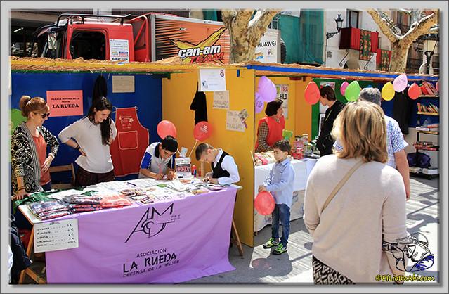 Feria de Asociaciones en Briviesca (4)