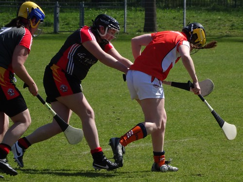 Hurling tournament in The Hague