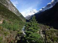 Beautiful valley behind Namrung