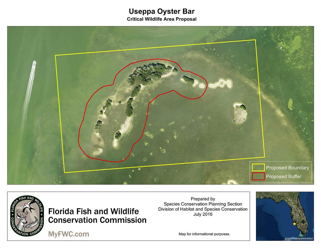 Pine Island Fish Camp Florida