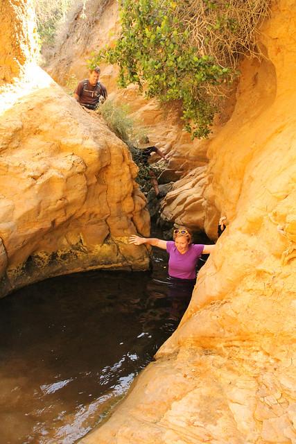 Sand Trap Canyon & Mottram Falls