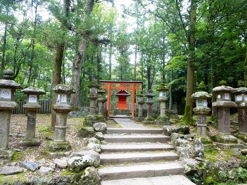 jp16-Nara-j1-Kasuga Taisha (23)
