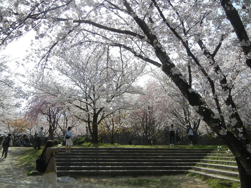 2015年讃岐家族旅行_110