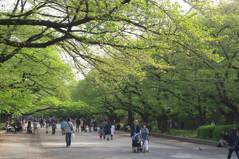 東京路地裏散歩 2015年4月18日