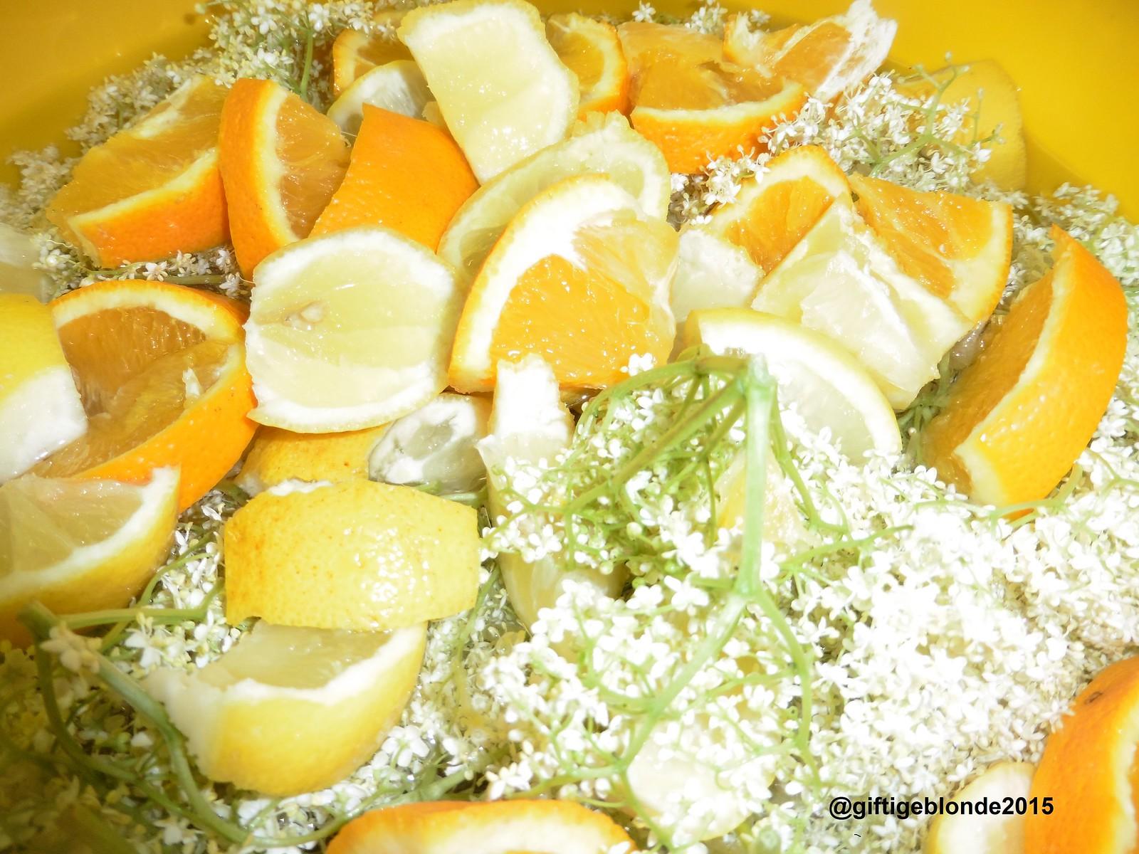 Hollerblüten, Orangen, Zitronen