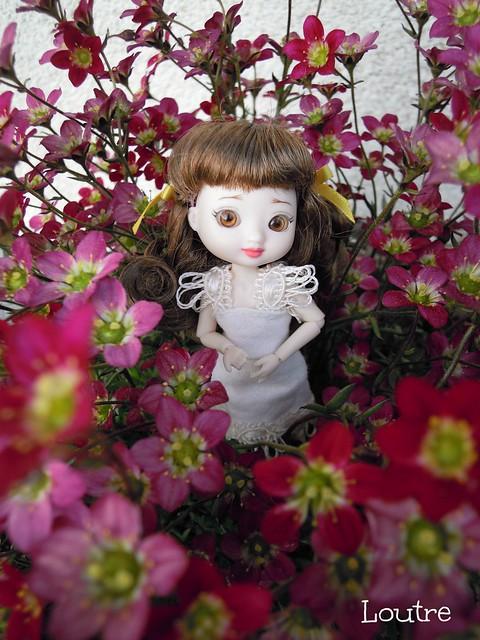 Amelia Thimble - Clarissa à l'extérieur p.3 - Page 2 16807581733_7ea61d92e1_z