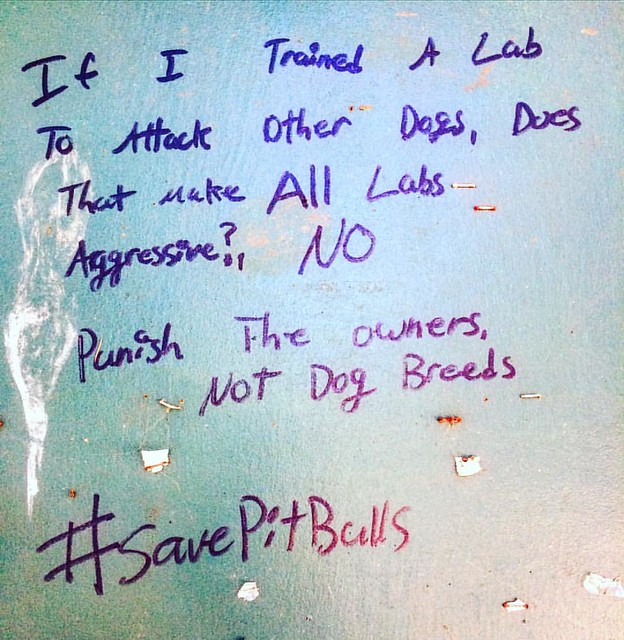 The pitbull owners around here sure are opinionated. And seem to always carry Sharpie markers.