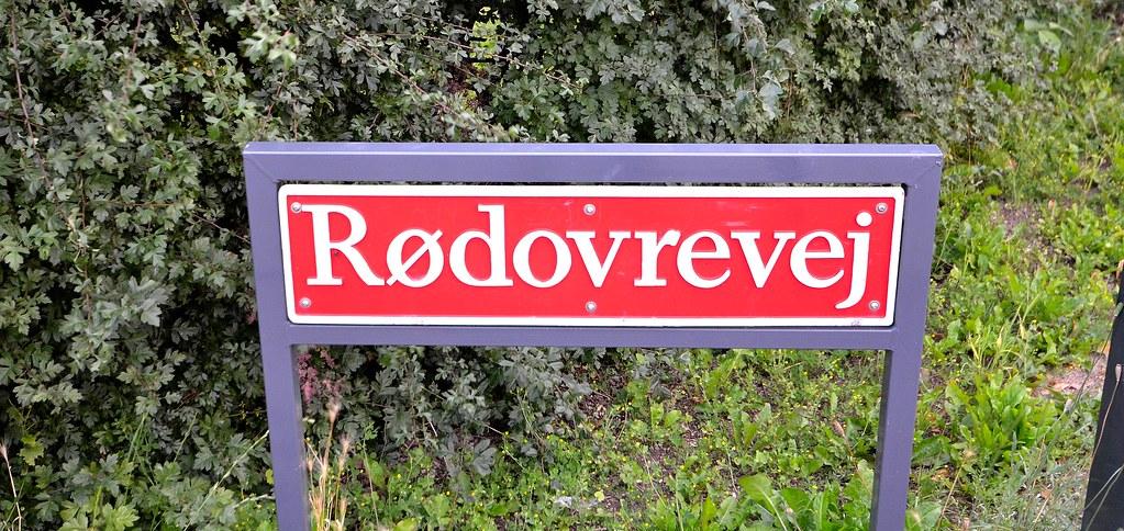 single københavn Rødovre