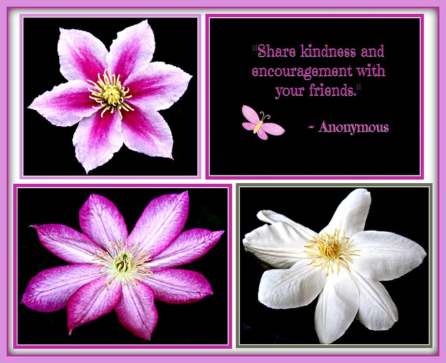 """Share kindness and encouragement with your friends."""
