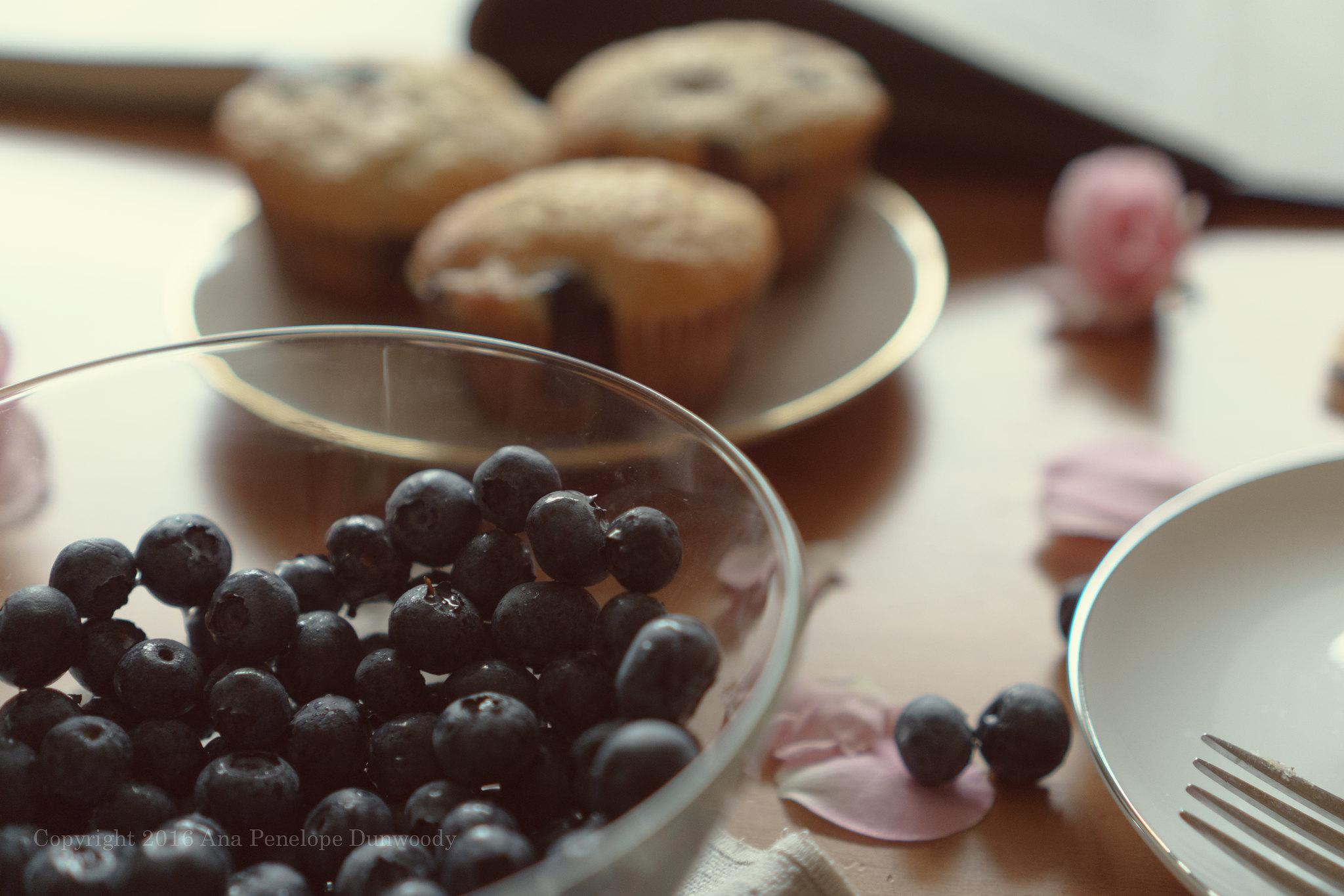 Blueberries, detail