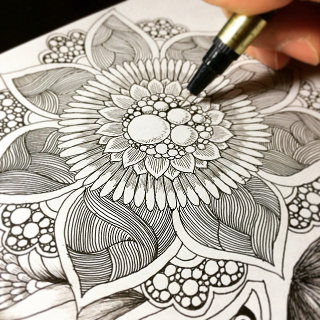 Flower Drawings Step By beautiful botanical doodl