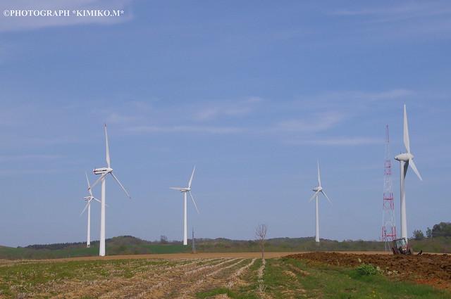 風車の見える丘2