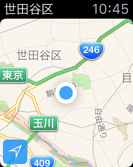 Apple Watch Map(縮小)