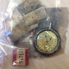 Classroom excavation artifacts