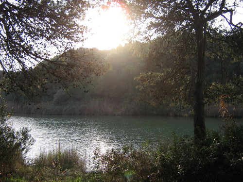 oasi wwf lago bosco romanazzi