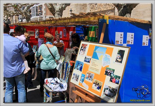 Feria de Asociaciones en Briviesca (5)