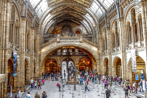How To Get To Natural History Museum From Paddington