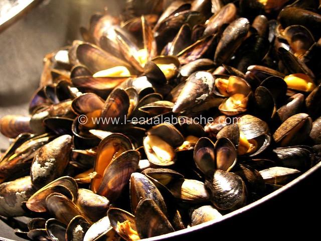 Moules Sauce au Roquefort & Pommes de Terre Nature © Ana Luthi 05