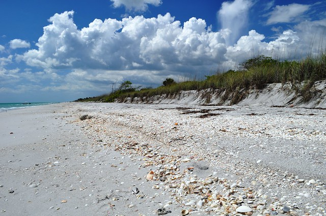 Don Pedro Island State Park, Englewood, Fla., May 16, 2015