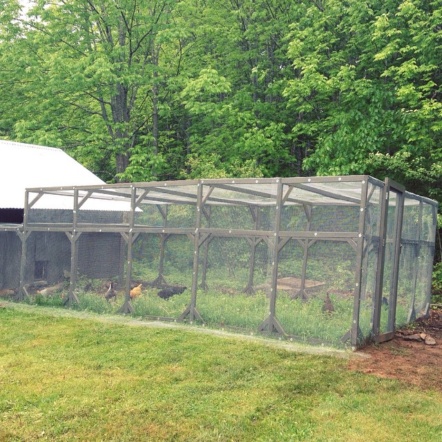 The new chicken run is finished!