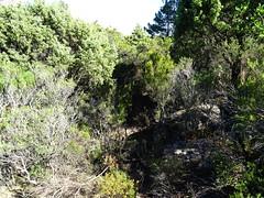 Départ de la trace du raccordement au bout du plateau de Ranedda