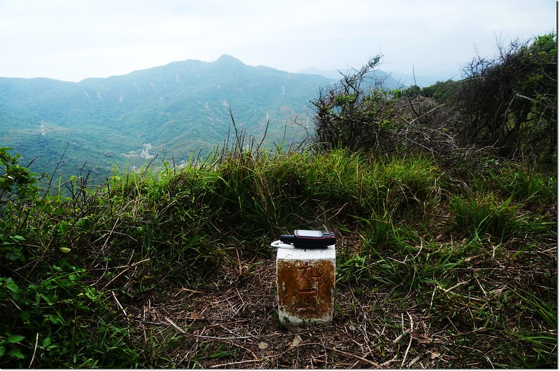 虎頭山三等三角點(#916 Elev. 441 m) 1