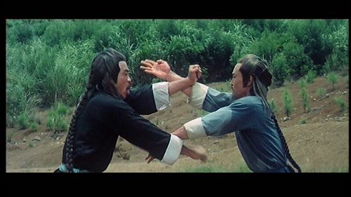VHS Discoveries: Classic Kung Fu   Brian Camp's Film and Anime Blog