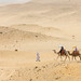 Camel Ride, Giza, Egypt 2015