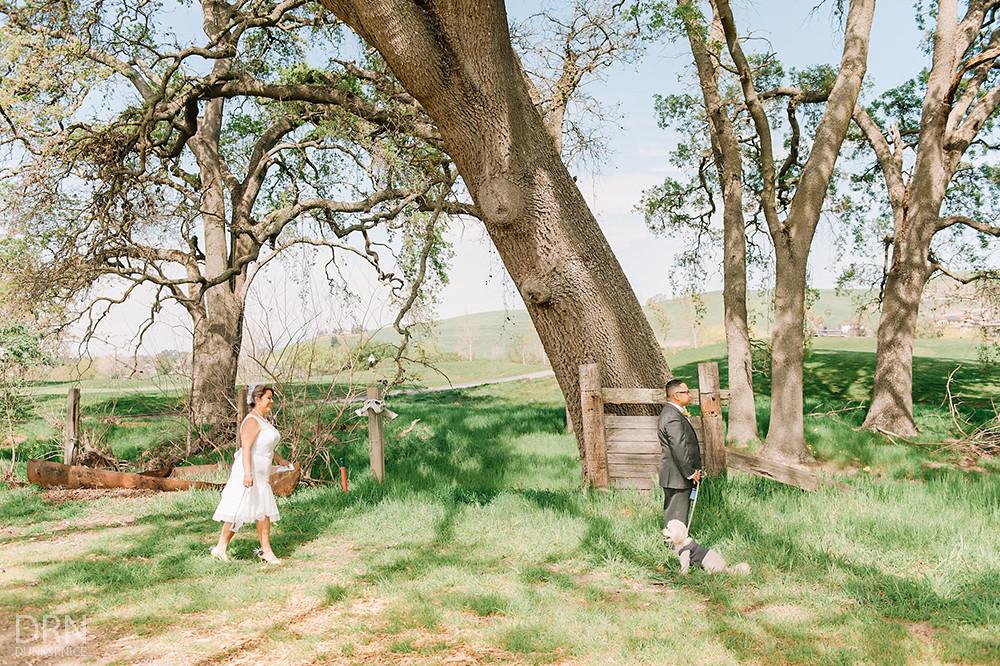 Lou + Greg - Wedding