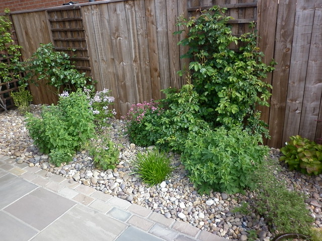 Side border filling out nicely