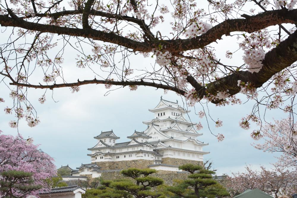 Chateau d'Himeji