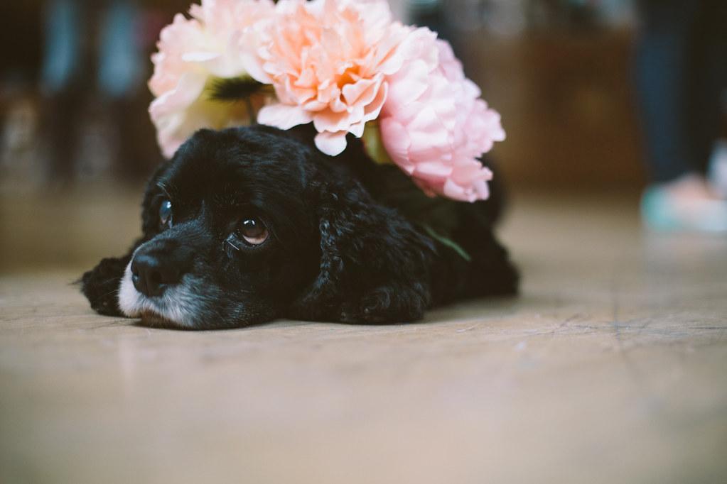 seattle flower crown workshop
