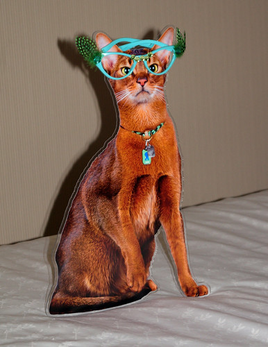 blogpaws-flatjakeglassesC01294
