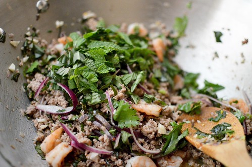 Shrimp & Chicken Larb Gai | by The Culinary Chronicles