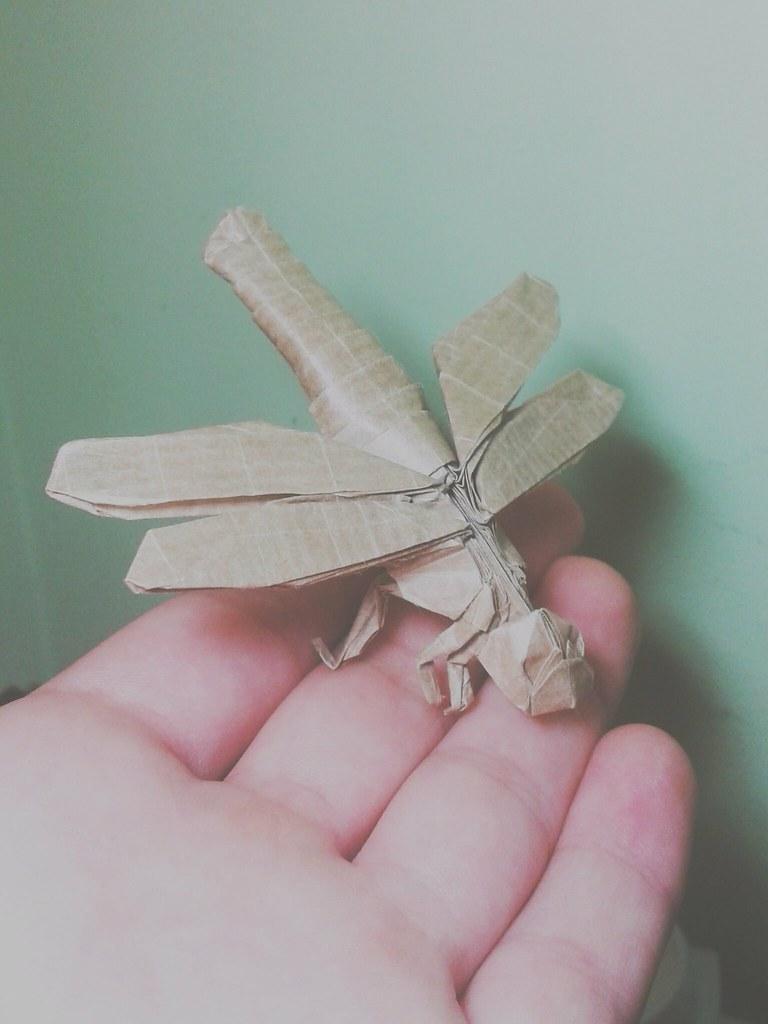 Satoshi Kamiya Dragonfly Satoshi Kamiya Test Fold