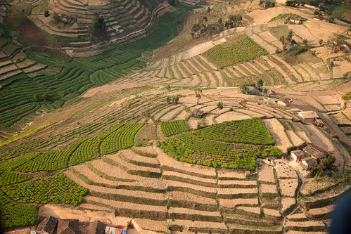 Terraced Fields | by World Bank Photo Collection