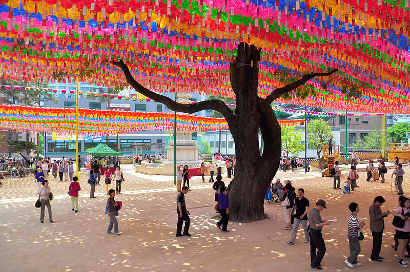 Bodhi Tree, Jogye-sa Temple, Seoul