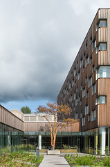 Umeå Arts Campus-3155