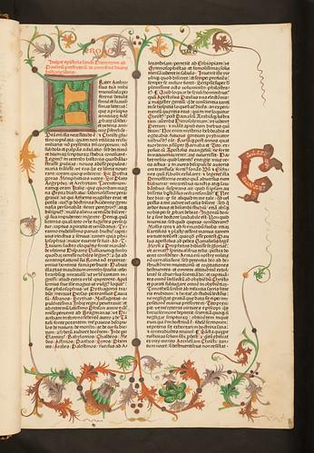 Foliate border decoration in Biblia