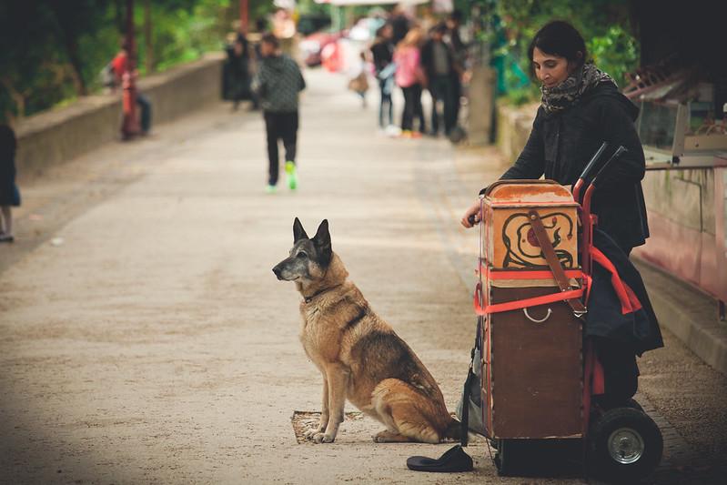 吉普賽人與她的狗
